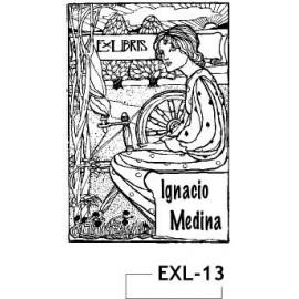 EXL-13